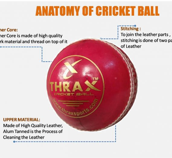 How to Choose the Best Cricket Ball